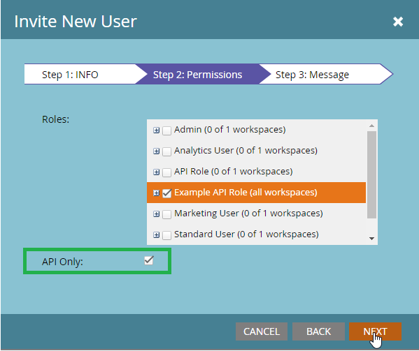 t check the 'API' option and also the 'API Only' and click on theNext button.
