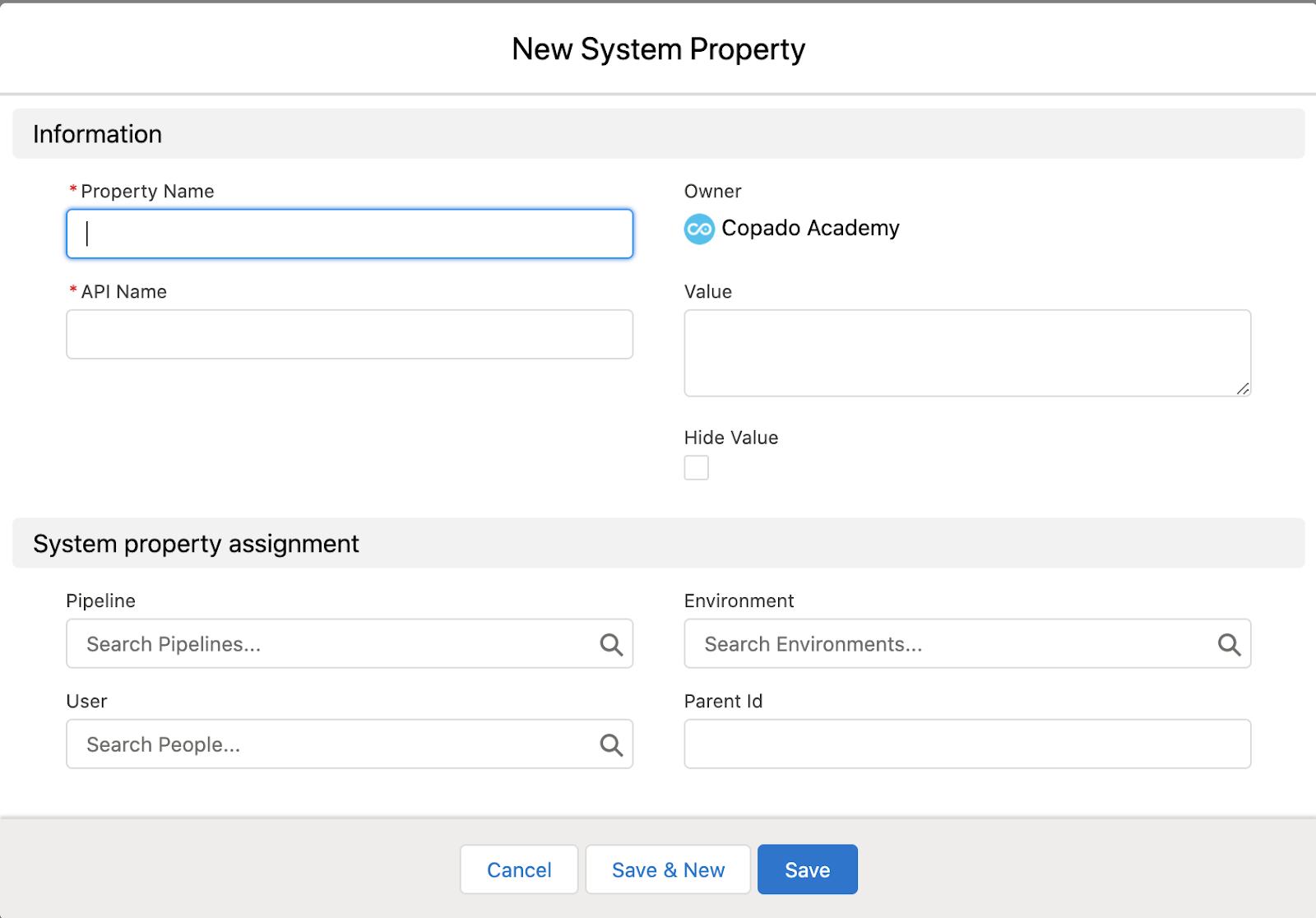 System Property record