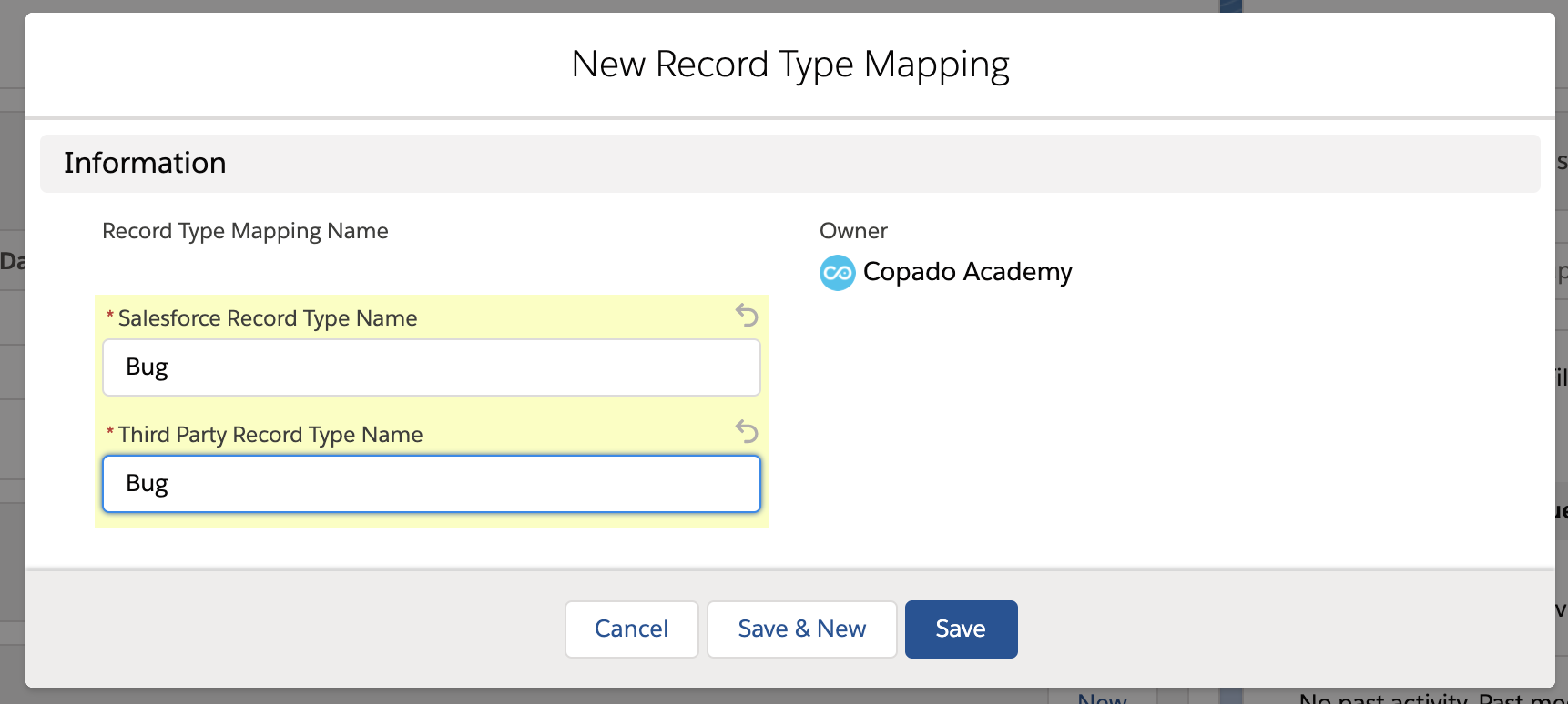 Data required for creating a new record type mapping