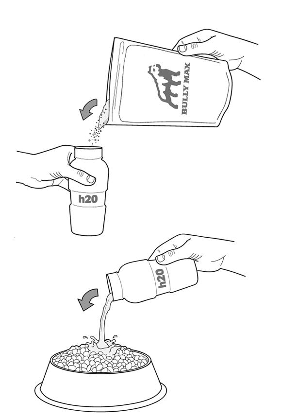 feeding-tips-tricks-gorilla-max.jpg