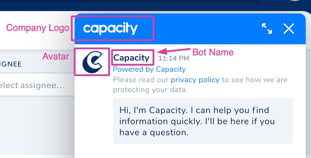 chat bot branding