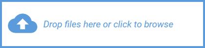 No file chosen button