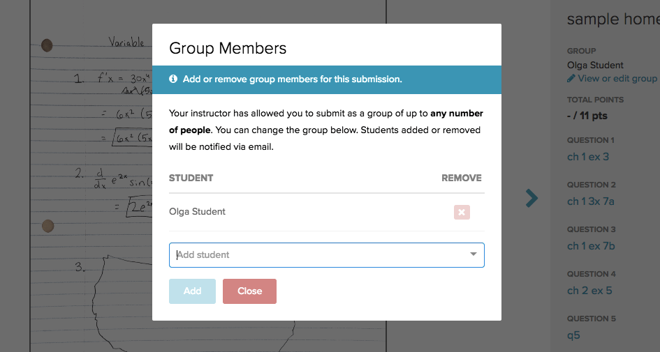How to add group members to your submission
